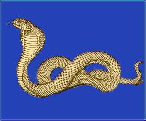 15 Menulio diena- Kobra