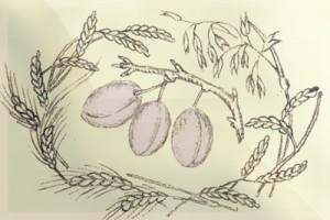 Kviečių vainikas ir slyvų kekė