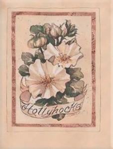 Rugpjūčio 29 dienos gėlė: Gelsvoji svilarožė