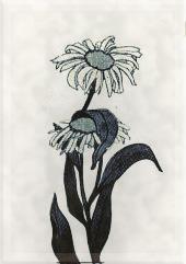 Spalio 5 dienos gėlė: Boltonija