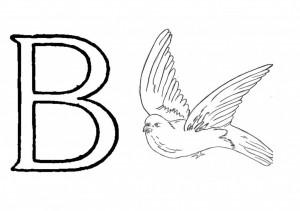 Raidė B- balandis