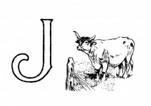 Raidė J- Jautis
