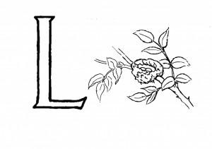 Raidė L-Lizdas