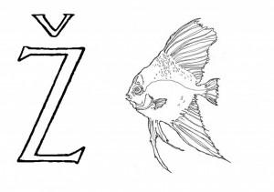Raidė Ž- Žuvis