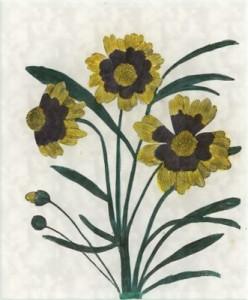 Spalio 31 dienos gėlė: Gludas