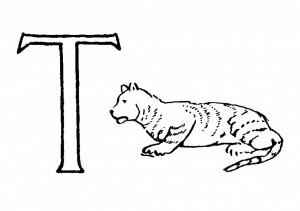 Raidė T- Tigras