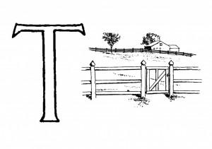 Raidė T- Tvora
