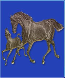 21 Mėnulio diena- Arklys