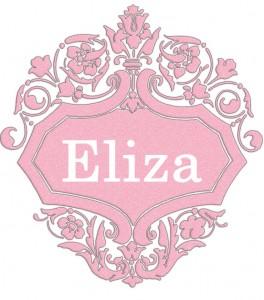 Vardas Eliza