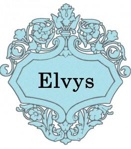 Vardas Elvys