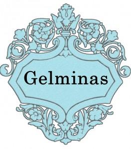 Vardas Gelminas