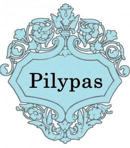 Vardas Pilypas