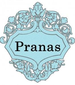 Vardas Pranas