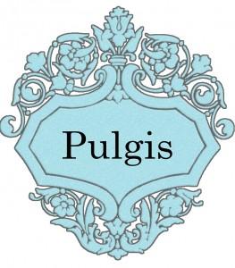 Vardas Pulgis