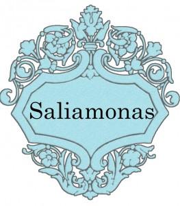 Vardas Saliamonas