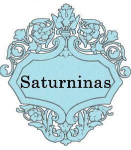 Vardas Saturninas
