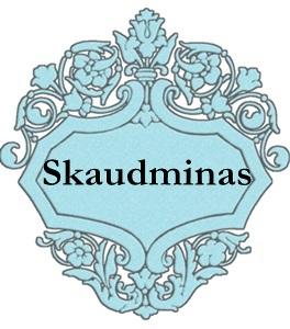 Skaudminas