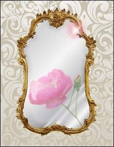 Slaptos veidrodziu galios