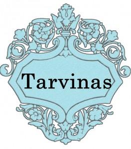 Vardas Tarvinas